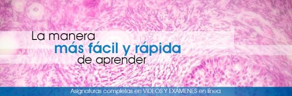 AprenderMedicina.com